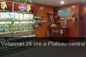 Veterinari 24 ore a Plateau-central